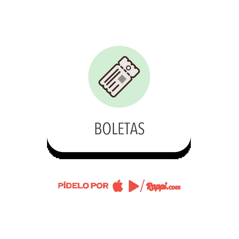seccion-boletas-14-01