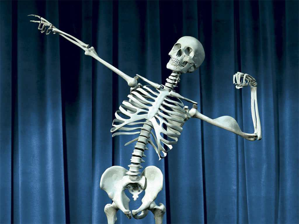 Lala 100 huesos-sanos